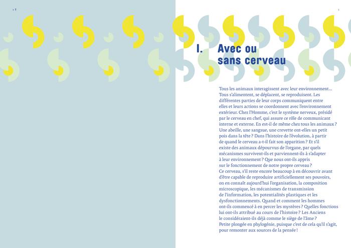 HS_Cerveau-96p-3